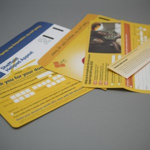 DL Bangtail Printed full colour, double bang-tail to allow Direct Debit Guarantee form