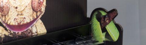 Bespoke Cut-out FSDU Header and sides, Cardboard Display Stand